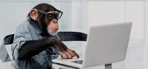 Come evitare di fare la figura della scimmia con il tecnico