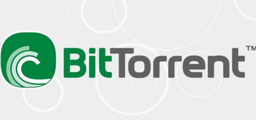 Motori di ricerca per torrent files: quali scegliere?