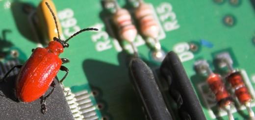 I pericoli in rete: dai virus informatici al phishing